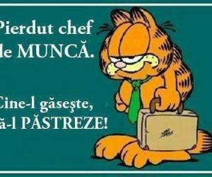 Anuntul lui Garfield
