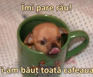 Ti-am baut cafeaua